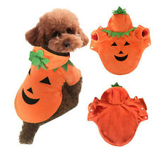 Cute Pumpkin Dog Pooch Halloween Costume Clothes Cotton Pet for Autumn Winter