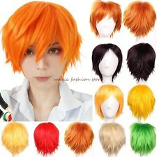 Short Hair Wigs Straight Cosplay Costume Party Fancy Dress Wig For Man And Women