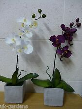 Large Artificial Potted Plant - White or Pink Orchid Flowers in Greystone Pot