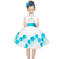 NEW Flower Girl Princess Embroidery Dress Kid Evening Party Wedding Tutu Dresses