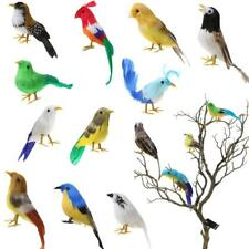 Lifelike Small Feather Bird Realistic Taxidermy Home Garden Decoration 15 Kinds