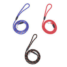 Small Pet Puppy Dog Training Harness Collar Traction Leash Lead Rope Strap