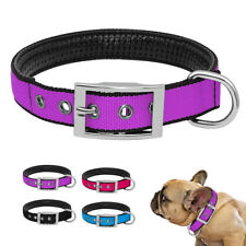 Luxury Nylon Pet Dog Collar for Pets Plain Design for Small Medium Dogs Blue Red