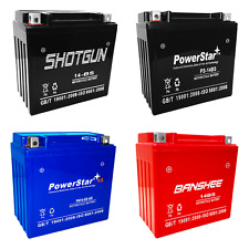 YTX14-BS SLA Replacement - Maintenance Free - Sealed AGM Motorcycle Battery