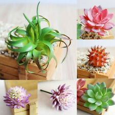 Artificial Succulent Plants Unpotted Fake Plastic Cactus  Home Office Art Decor