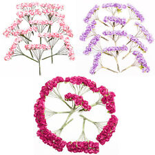 144pcs Mini Paper Rose Flowers for Craft Wedding Favor Home Office Decoration