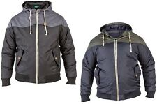 MENS BRANDED D555 PADDED JACKET JEFFERY KING SIZE CASUAL IN 2 COLOURS ALL SIZES