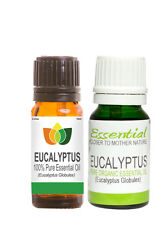 100% Pure Eucalyptus Essential Oil - Multi Size Free UK P&P Aromatherapy