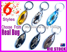 Marquise Amber Fossilized Real Scorpion Insect Bug Key Chain Ring Car Keyring