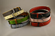 LUXURY DESIGNER PET PUPPY /DOG REAL LEATHER PADDED