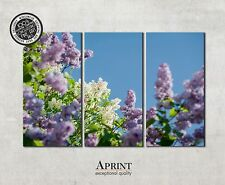 Wall Art Canvas Picture Print - Lilac - ready to hang 3 panel canvas art
