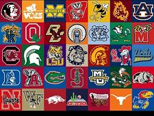 NCAA Dog Jerseys from 18 Popular Colleges in 4 different sizes to fit Small Dogs