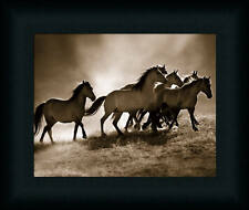 Wild Horses by Lisa Dearing Sepia Wildlife Framed Art Print Décor Picture 8x10