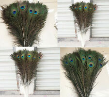 Free Shipping 10/20/50/100pcs peacock feathers peacock eye 10-32inch /25-80cm