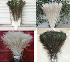10/20/50/100pcs peacock feathers peacock eye 10-32inch /25-80cm Color Optional