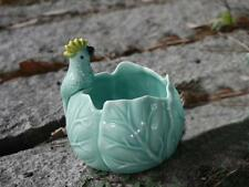 New Small Container Succulent Herb Plant  Decor Flower Pot  Parrot on Leaf