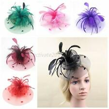 Elegant Wedding Ascot Races Party Fascinator Veil Net Hat and Feathers Hatinator