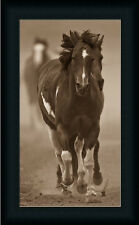 Runs With Birds by Gary Galloping Horses Framed Art Print Wall Décor Picture