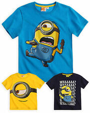 Boys Official Minions T-Shirt New Kids Short Sleeved Despicable Me Top 6-12 Yrs