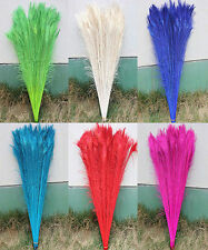 beautiful 50-200PCS 75-80cm/28-30inch Featured Quality peacock feathers eye7
