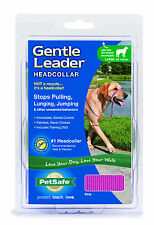 PetSafe/Premier Pet GENTLE LEADER DOG HEADCOLLAR - Pink