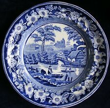 Antique Blue and White 23cm Wild Rose Plate: Please See Photos