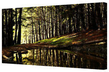 Green Forest Lake Reflection LARGE Framed Black Canvas Art Picture Print Woods
