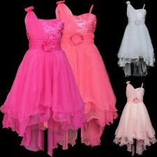 Princess Flower Girl Party Prom Wedding Bridesmaid Formal Train Dresses Gown