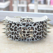Spiked Studded Leather Large Dog Collar 4 Rows Spiked for Pitbull Terrier M L XL