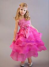 Embossed Flower Girl Tiered Dress Flower Girl Pageant Occasion Size 2T-9 FG136
