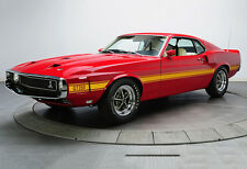 1969 Ford Mustang GT350 Shelby Cobra - Car Poster Print - Muscle Car Photo Art