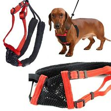 Safety Anti-Pull Breathable Mesh Puppy Dog Harness Vest No Pull Control Straps