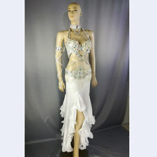 New Bellydancing clothes suit bra&belt&skirt Women's carnival belly costume set