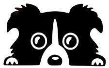 Border Collie Cute Cool Funny Car Truck Window Vinyl Decal Sticker 12 Colors