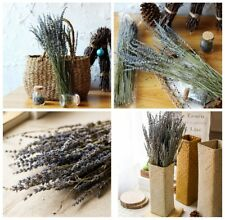 Home Decoration New 100 Stems Natural Dried French Fragrant Lavender Bunch Tied