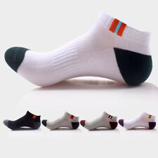 Mens Socks Crew