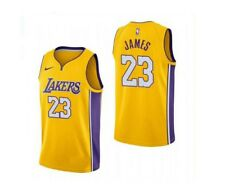 NEW Los Angeles Lakers #23 LeBron James 4 Colors Contact Seller For Sizes S-XXL