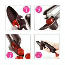 Professional Cherry Pitter Core Seed Remover Kitchen Accessories Olive Seed Move