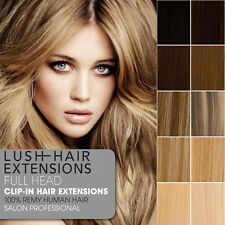 Lush Hair Extensions Clip In Remy Human Hair Extensions Full Head