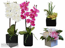 Large Artificial Replica Office House Plants Silk Flowers Red Roses Bamboo Tree