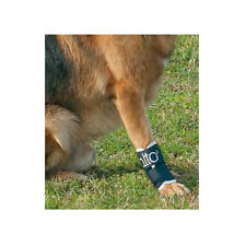 ORTHOPEDIC BRACE Carpal Brace FOR DOGS   BALTO - BT JOINT