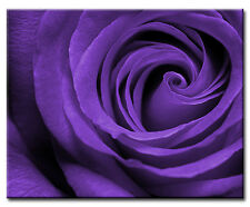 "Rose Flower Canvas Picture. 16""x20"". Various colours. New Wall Art. Floral print"