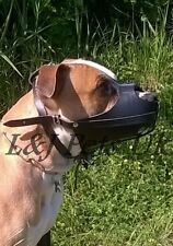 New Strong Real leather Dog muzzle for American Staffordshire Terrier  Amstaff