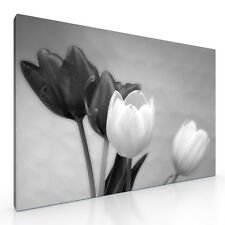 Large Tulip Flowers Canvas Picture Print artwork 20x30. ready to hang wall art
