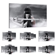 47 Shapes Canvas Picture Print Wall Art People Woman Sword Weapon Sports 2261 E