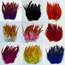 wholesale  50/100/200pcs The rooster feathers 4-6'' for hot sale