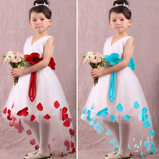 Baby Girls Kids Princess Flower Petals Party Wedding Fantasy Formal Fancy Dress
