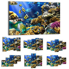 Canvas Print Framed Picture 47 Shapes Wall Art underwater world animals 2662 UA
