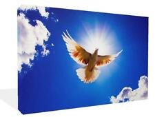 Flying Dove Bird of Peace Large Framed Giclee Canvas Art Picture Print Modern