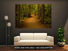 Wall Art Canvas Print Picture Forest Path Autumn Lights-Unframed